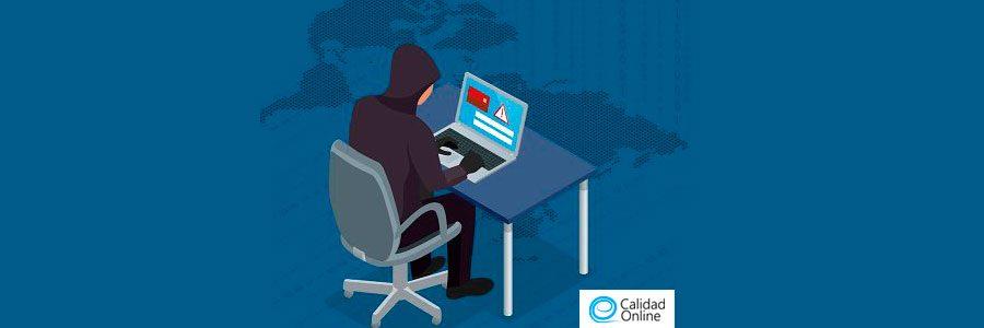 Criminales cibernéticos. Ciberocupación